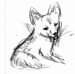 Fox Kit - art by Jane Valencia (c) 2005