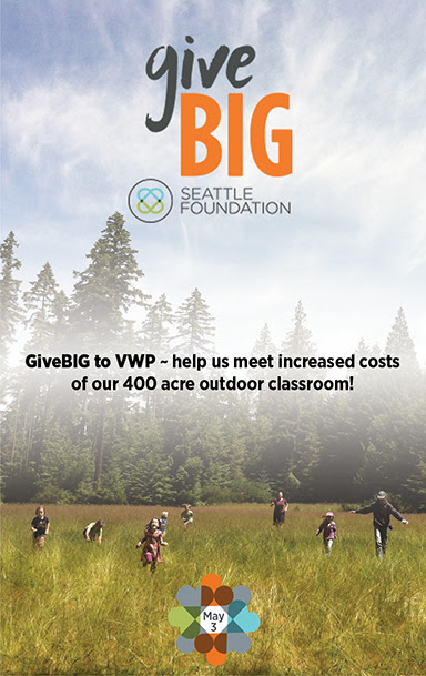 GiveBIG to VWP