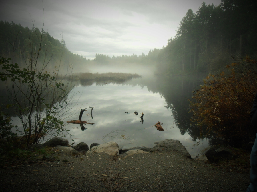 Fisher Pond - photo by Rebecca Graves