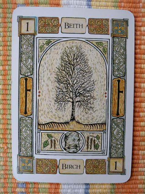 Birch - art