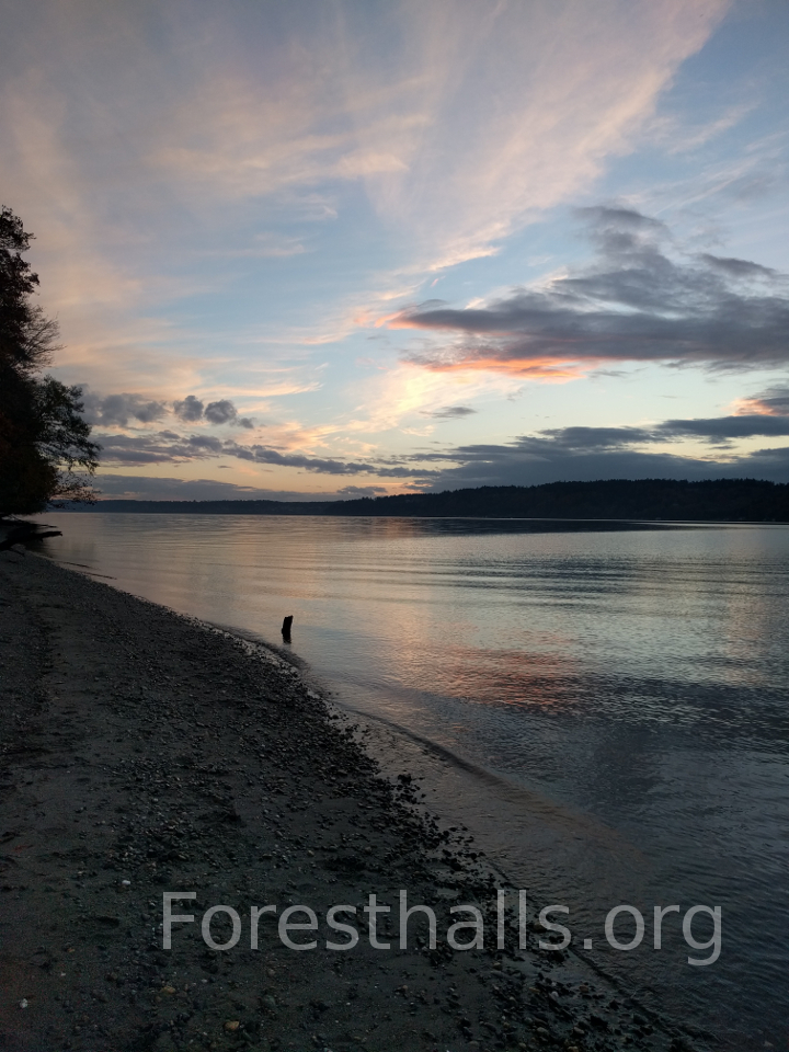 Salish Sea and Shore - photo by Jane